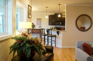 Cannon Ridge Model Home Interior