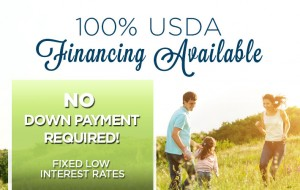 USDA Financing Available