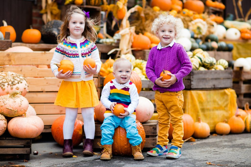 Group of little children enjoying harvest festival celebration at pumpkin patch. Kids picking and carving pumpkins at country farm