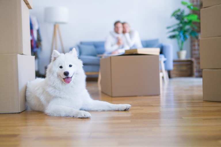 Preparing to Move into Your New S&A Home